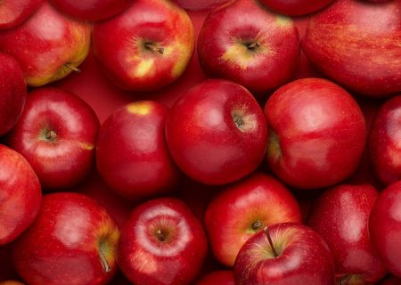 سیب مراغه در تنگنای صادرات