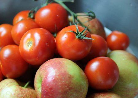 قیمتهای عجیب و غریب در بازار میوه/ نارنگی بندری ۵۵ هزار تومان شد