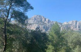 اختصاصی یاز اکو/ جنگل های آنتالیا در آستانه بهار