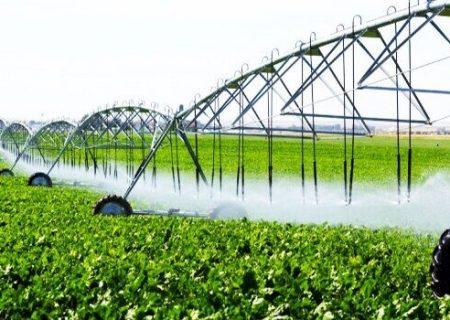 زمین های کشاورزی سند دار می شوند