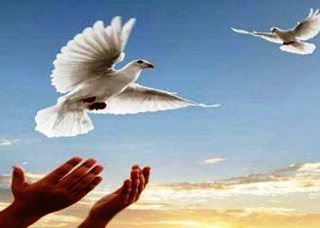 آزادی ۱۲ زندانی در اردبیل توسط خواننده موسیقی پاپ