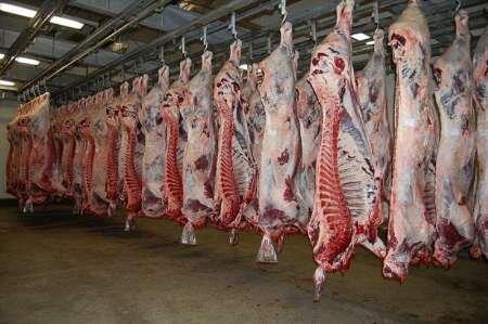 اقدام کشتارگاه تبریز برای جلوگیری از افزایش قیمت گوشت