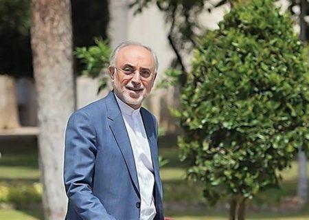 علی اکبر صالحی: با برجام صنعت هستهای نه متوقف و نه کُند میشود / اگر آمریکا به برجام برگردد و تحریمها را رفع کند، ایران هم باز خواهد گشت