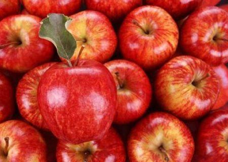 ۸۰ هزار تن سیب درختی آذربایجان غربی در انتظار رفع موانع صادراتی