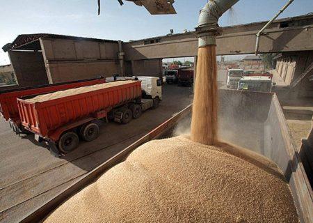 ۱.۴ میلیون تن گندم مازاد برمصرف کشاورزان در کشور خریداری شده است