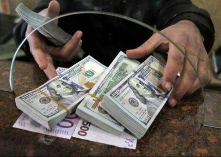 قیمت رسمی ارز/ قیمت دلار و یورو ثابت ماند