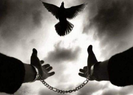 آزادی ۳۴۲ زندانی جرایم غیر عمد با کمک ۸۵ میلیاری مردم در سال گذشته