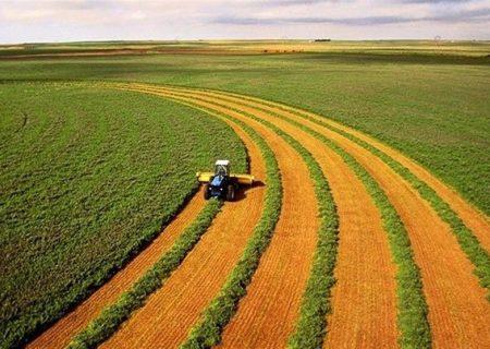 «تحقیق برای توسعه» بستر مانعزدایی از بخش کشاورزی