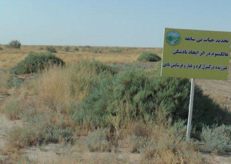 ریزگردهای دریاچه ارومیه در عجبشیر چگونه کنترل شد؟