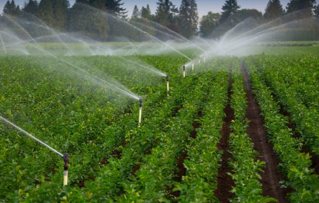 اجرای سیستم آبیاری تحت فشار در بیش از ۷۸ هزار هکتار اراضی آذربایجان شرقی