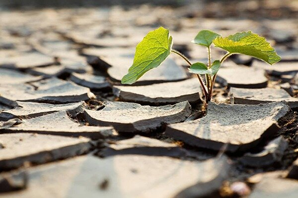 تنش آبی درراه تبریز/کاهش ۲۶درصدی آب ورودی به سدهای آذربایجان شرقی