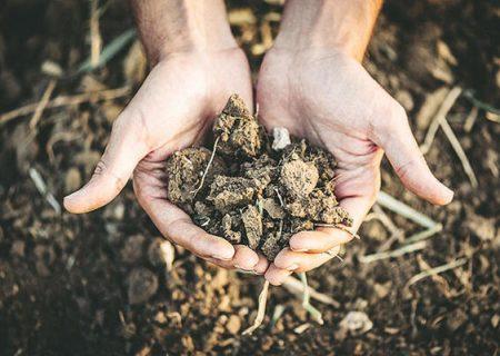 خشکسالی ۳۹۰۰ میلیارد تومان به کشاورزی اردبیل خسارت زده است
