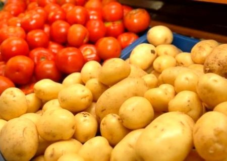 کمبود آب کشت سیب زمینی و گوجه فرنگی را در آذربایجان غربی کاهش داد