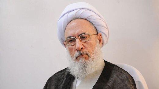 نظر یک عضو مجمع تشخیص درباره واردات خودرو/ زننده است در جمهوری اسلامی،افرادی ماشین خارجی سوار شوند