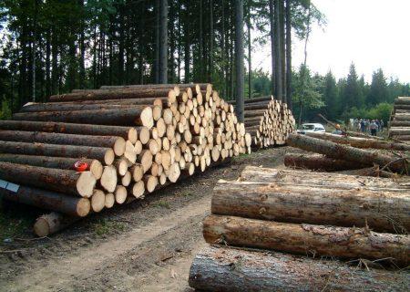 ممنوعیت حمل، جابجایی و قطع درختان تا اواخر آبان ماه در خداآفرین