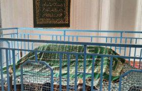 مقبره سلطان محمود غزنوی در افغانستان
